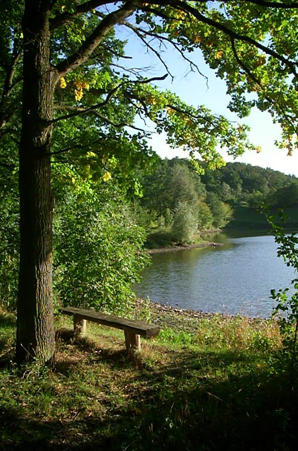 Der Nassauer Stausee - auch für Spaziergänge bestens geeignet
