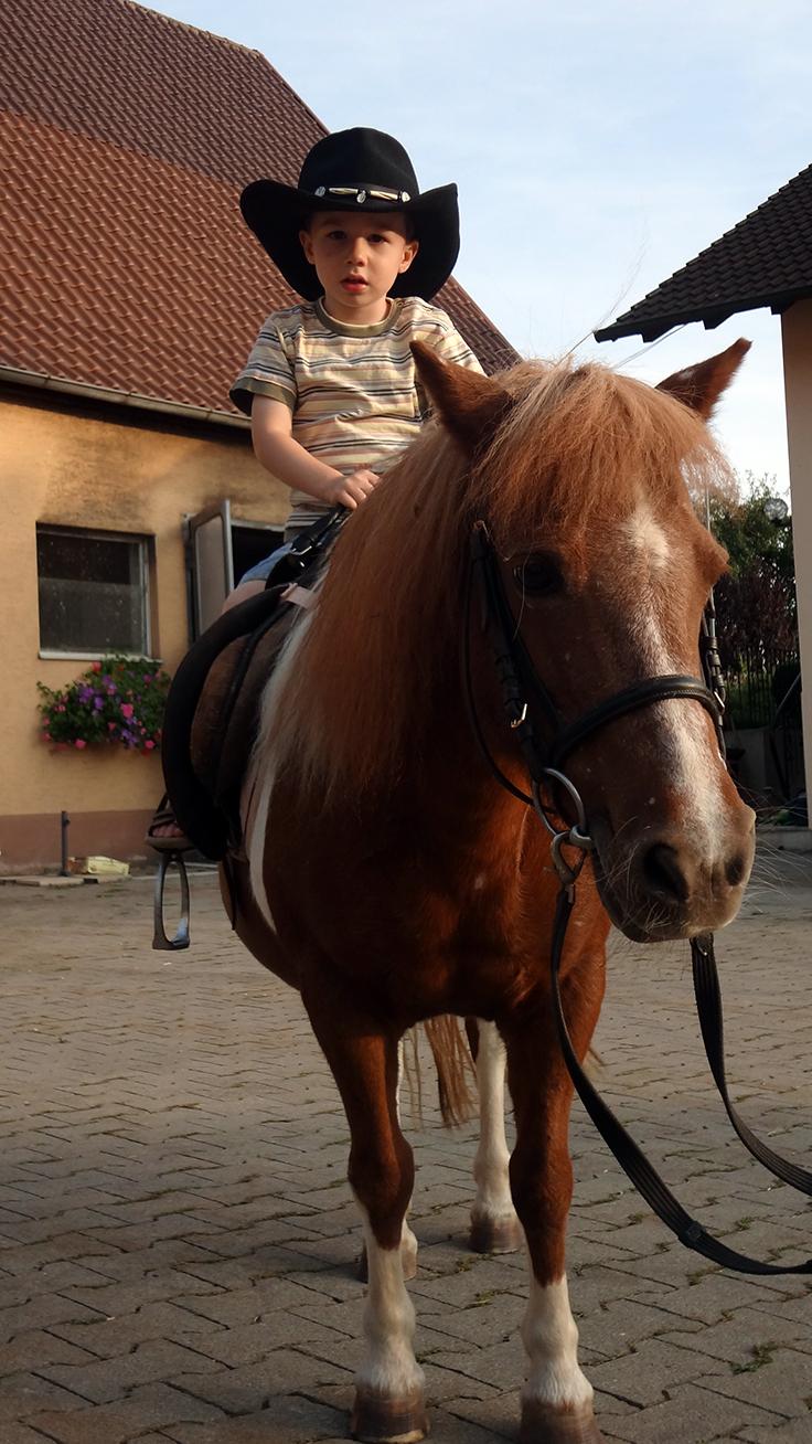 Ponys Ferienhof Henn